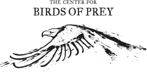 Center-For-Birds-of-Prey